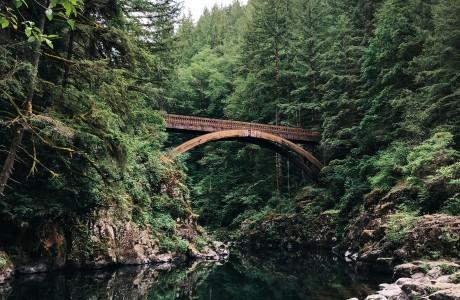 גשר אקולוגי