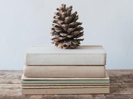 3 ספרי יער בהנחה גדולה